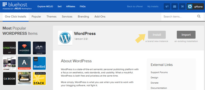 fast install wordpress on the bluehost