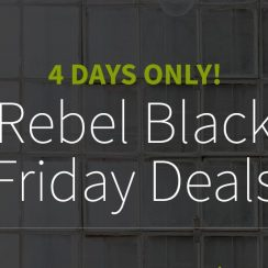 Rebel Black Firday Deal – Retailer As much as ninety nine% On Domains/Hosting, Transfer Achieveable
